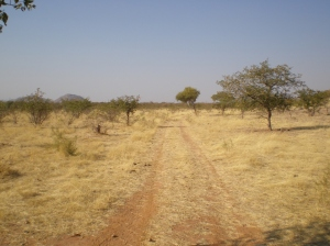 "The ""road"" I Drove to Get to the Village Above"